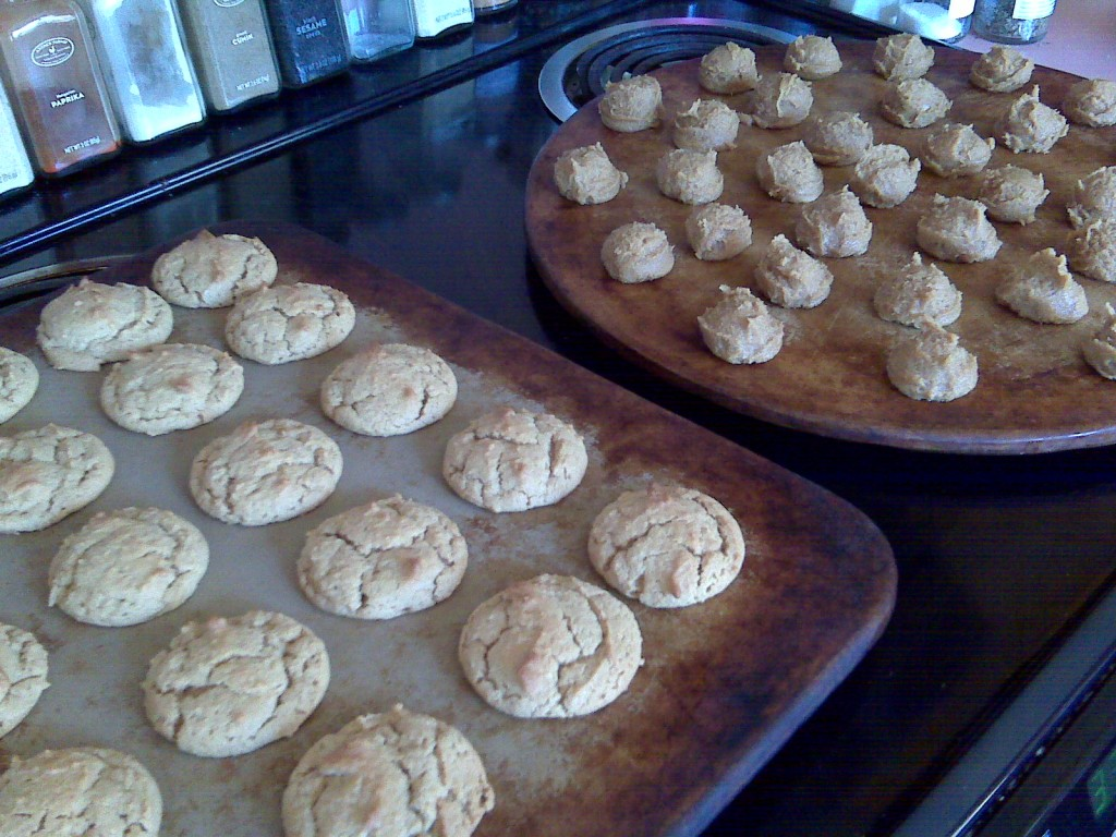 Aunt Angie's GFCF Peanut Butter Cookies