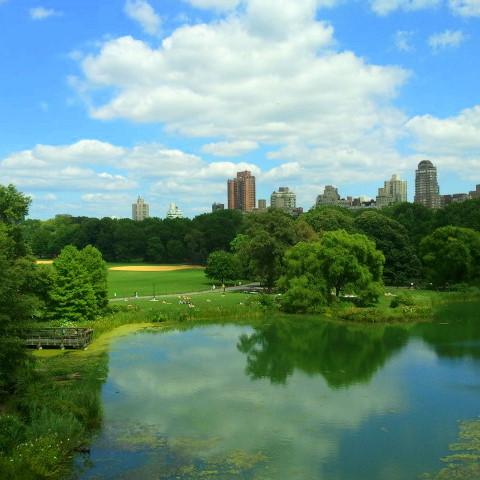 Central Park -- Gina Lynette